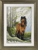 Hest-sommer